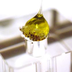 Az car isomalt m xico cocina molecular for Caracteristicas de la cocina molecular